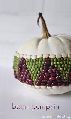 Bean pumpkin 103014