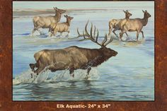 DanMetz Art – Wildlife Fine Art