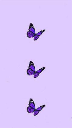 Purple Wallpaper   Purple Butterfly Wallpaper, Purple