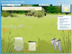 Virtual Lab: Estimating Population Size - Students use mark and recapture to estimate the number of grasshoppers in a field.  You will need to click on the lab from the menu.