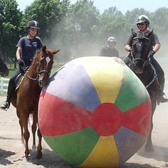 (on left) Retired thoroughbred racehorse Fleet Forum, turned police horse, and his owner U-Mass Mounted Police Officer Jessie Cameron participating in a Mounted Police Training Academy with a huge, colorful ball.