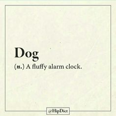 Dogs are amazing Description of your cute furry alarm clock. I Love Dogs, Puppy Love, Cute Dogs, Dog Training Bells, Funny Definition, Dog Rules, Dog Grooming, Grooming Shop, Animal Quotes