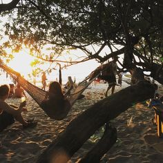 3 things you don't want to miss in Santa Teresa, Costa Rica. Here are We are Nodes' top 3 list of things to do in Santa Teresa!