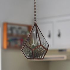 Image of Teardrop Terrarium with Etched Arrow