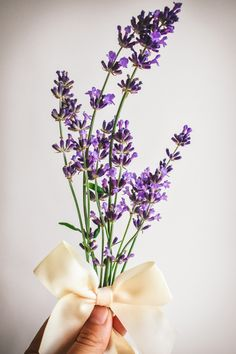 Just melt three sticks of butter on the stove, throw in a handful of purple lavender buds, and let it all simmer away for about 15 minutes. Strain out the lavender and let the butter cool and solidify. Voila! You now have exquisite homemade lavender-infused butter in your hands!