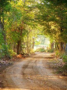 Makes me wanna take....Makes me wanna take a back road.    Country Road....Shell Knob, MO