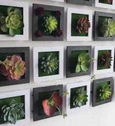 #Home #Decor / 30+ Unbelievable Succulent Decoration Ideas Plant Wall Decor, Frame Wall Decor, Frames On Wall, Jardin Vertical Artificial, Artificial Plants, Succulent Wall, Succulent Plants, Diy Living Room Decor, Room With Plants