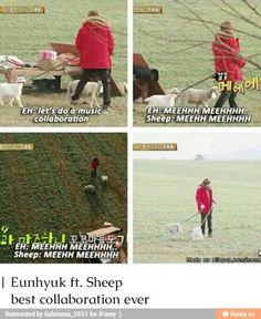 Eunhyuk and the lamb was my fav part of this show ♡ - Buddy The Elf Siwon, Leeteuk, Heechul, Boys Korean, Super Junior Funny, Buddy The Elf, Kid Memes, Pop Bands, Kpop Groups