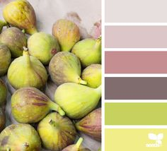 { market hues } image via: @rotblaugelb #color #palette #colorpalette #pallet #colour #colourpalette #design #seeds #designseeds #seedscolor