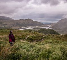 """Dearbhaile   Travel & Wildlife on Instagram: """"Picnic - check. Views - check. Couple of photos before the rain hits - check and check. . . #thiswildlifeofmine #ireland #irelandtravel…"""" Ireland Travel, Wild Life, Picnic, Rain, Couples, Instagram Posts, Nature, Check, Photos"""