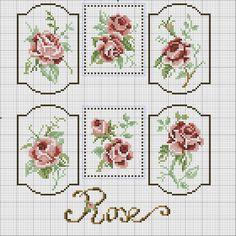 Gallery.ru / Fotografía n ° 98 - DIFERENTE rosas - irisha-ira