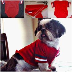 DIY Dog Shirt from Baby Tee or any baby clothing! this would be easy fo - Fleece Shirt -ideas of Fleece Shirt - DIY Dog Shirt from Baby Tee or any baby clothing! this would be easy for cold shivery chihuahua! Shih Tzu, Fleece Dog Coat, Dog Jacket, Puppy Clothes, Dog Costumes, Crazy Costumes, Animal Projects, Dog Sweaters, Dog Shirt