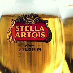Stella Artois Draught Beer, Beer 101, Stella Artois, Get Educated, Bourbon Whiskey, Cigars, Craft Beer, Belgium, Food And Drink