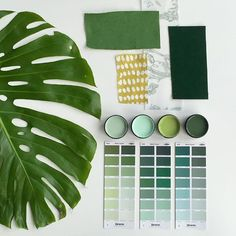 Green with envy - this mood board will ignite your love for all things green…