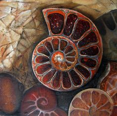 Spirals In Nature, Art Alevel, Coffee And Books, Ammonite, Natural Forms, Organic Shapes, Life Drawing, Tribal Art, Marine Life