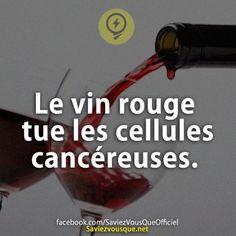 Le vin rouge tue les cellules cancéreuses.   Saviez Vous Que?