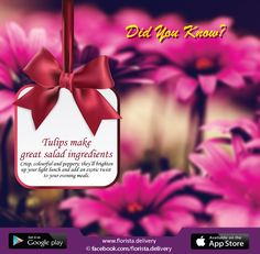 Tulips make great salad ingredients To order just call us- 01984-549141 For more flowers visit our Website: www.florista.delivery Follow us:  https://twitter.com/floristadelvr https://www.pinterest.com/floristad/ https://www.facebook.com/florista.delivery/ #flowertips #onlinestore #floristadelivery #flowerdeliver #flowershop #florista #onlineflowershop #flowerindhaka #dhaka #bangladesh