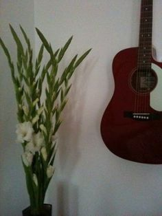 Hemma. Music Instruments, Guitar, Musical Instruments, Guitars