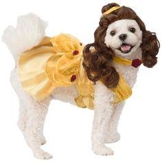 589 Best Dog Halloween Items images in 2019 | Dog halloween