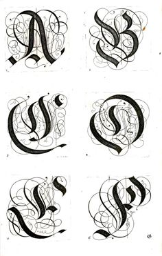 samples of different calligraphy and typography alphabets.