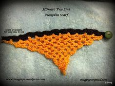Pumpkin neck scarf for dog.  http://astore.amazon.com/jlcr-20