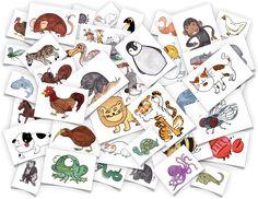 Flashcards assez réussies en téléchargement gratuit. D'autres thèmes à découvrir sur le site. Cite les animaux que tu reconnais sur la photo.