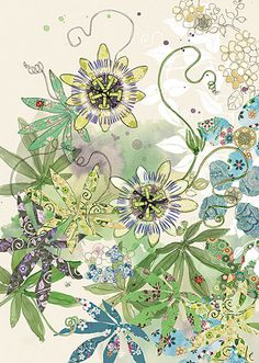 Quality greeting cards designed and published in the UK. Browse our ranges and shop online for decorative everyday designs and Christmas cards. Plant Illustration, Creative Illustration, Watercolor And Ink, Watercolor Flowers, Vine Drawing, Shadow Painting, Bug Art, Flowering Vines, Passion Flower