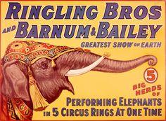 Vintage Ringling Bros and Barnum & Bailey Circus Poster Old Circus, Circus Art, Circus Theme, Circus Birthday, Birthday Parties, Circus Clown, Happy Birthday, Jumbo The Elephant, Ringling Brothers Circus