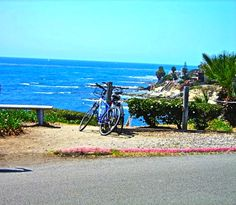 La Jolla beach-see you this summer
