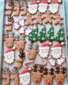 Festive cookies!