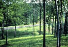 Mississippi's Natchez Trace Parkway is a scenic drive across the state from the Mississippi River to Nashville. Hit the road to see early settlements historic battlefields and the rich Southern tradition of three states.