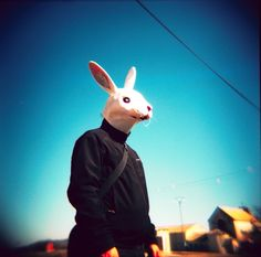 White rabbit // Lomography