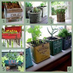 Different planter ideas