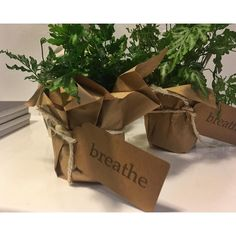 Beautiful little gifts for the guests at my talk this evening. #dobreathe #breathesync