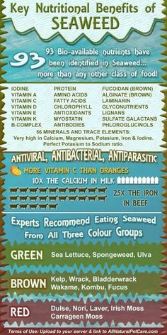 Seaweed benefits #LIMU KrisHelwege.iamlimu.com