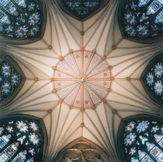 photographer David Stephenson captures the vaults and ceilings of European architecture