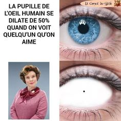 The pupil of the human eye dilate of when seeing someone we like Funny Naruto Memes, Funny Memes, Harry Potter Animé, Harry Potter Humour, Hilario, Geek Humor, Hogwarts, Fun Facts, Funny Pictures