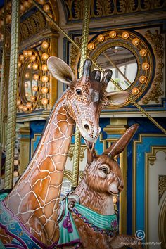 Carousel Giraffe and Rabbit Amusement Ride on a Merry-Go-Round in Pittsburgh Pennsylvania A Fine Art Nursery Entertainment Photograph Amusement Park Rides, Carnival Rides, Before Midnight, Painted Pony, Merry Go Round, Carousel Horses, Fine Art Photo, Oeuvre D'art, Fantasy