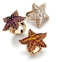 A selection of starfish rings from the Sirene collection by Pomellato.