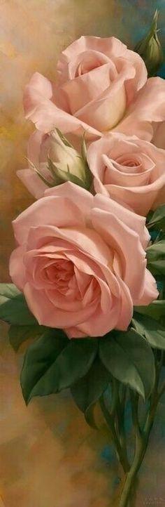 Roses in bloom My Flower, Pretty Flowers, Flower Art, Pink Flowers, Cactus Flower, Exotic Flowers, Colorful Roses, Paper Flowers, Arte Floral