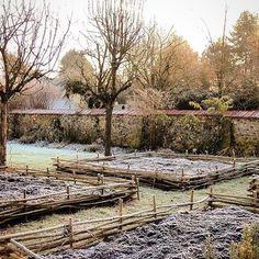 SHARON SANTONI (@sharonsantoni) • Instagram photos and videos Beautiful Winter Scenes, Potting Tables, English Christmas, Covered Garden, Christmas Preparation, Open Fires, Winter Garden, Countryside, Paths