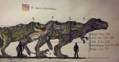 Draw Dinosaurs Size comparison of T-Rexes from the franchise . T Rex Jurassic Park, Jurassic Park Poster, Jurassic World Dinosaurs, Jurassic Park World, Tiranosaurios Rex, Jurassic World Fallen Kingdom, In The Zoo, Falling Kingdoms, Extinct Animals