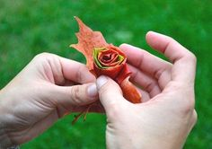 How to make Autumn Maple Leaf Roses ... should work with other fall leaves too.