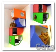 cat diy projects fort  Cat shelf. cat modular wood boxes