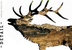 Elk Silhouette In Bark, Wall Art Decor : Woodland Animal Photography - Nature Theme Nursery, Rustic Lodge & Home on Etsy, $60.00