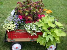 Creative container ideas.