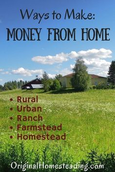 Ways to Make Money from Home offers helpful tips and ideas for creating additional income from your homestead, farmstead or backyard. Ideas for extra income are from urban to rural. There is something for everyone when it comes to creating extra income. Make Money From Home, Way To Make Money, How To Make, Raising Farm Animals, Cash Crop, Farm Business, Urban Homesteading, Skills To Learn, Grow Your Own Food