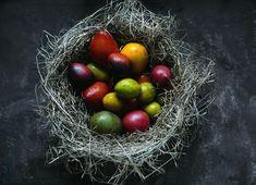 Secrete ale cultivarii castravetilor in gradina bio - magazinul de acasă Ale, Fruit, Vegetables, Photography, Food, Tomatoes, Author, Slip On, Hipster Stuff