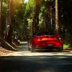 Hit the open road & make some new memories this summer. What are your favourite driving routes? #MazdaFans #RoadTrip