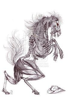 Skeleton Horse by Teggy on deviantART